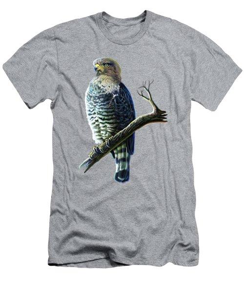 Southern Banded Snake Eagle Men's T-Shirt (Athletic Fit)