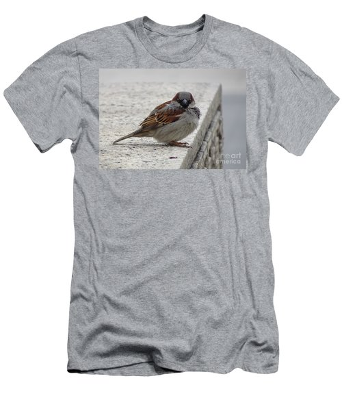 Men's T-Shirt (Athletic Fit) featuring the photograph Sparrow by Angela DeFrias