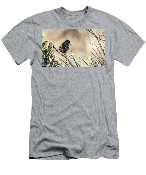 Snarky Sparrow Men's T-Shirt (Athletic Fit)