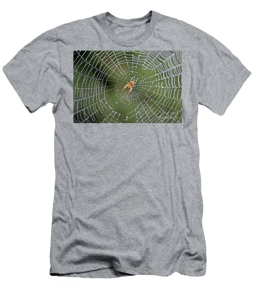 Spider In A Dew Covered Web Men's T-Shirt (Athletic Fit)