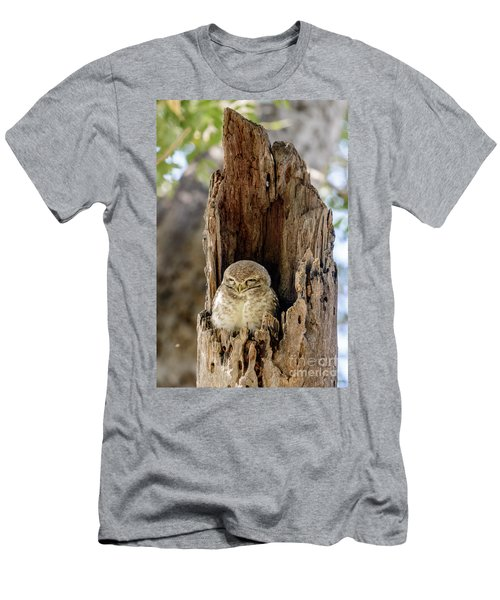 Spotted Owlet Men's T-Shirt (Athletic Fit)