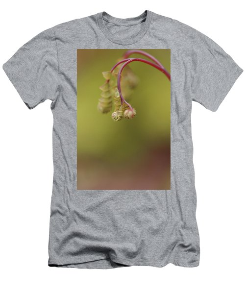 Men's T-Shirt (Slim Fit) featuring the photograph Spring Coming 2017 by Jeff Burgess