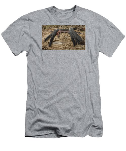 Spring Feathers Men's T-Shirt (Slim Fit) by Randy Bodkins