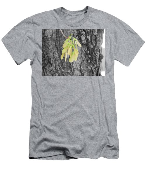 Spring Whirligig Men's T-Shirt (Athletic Fit)