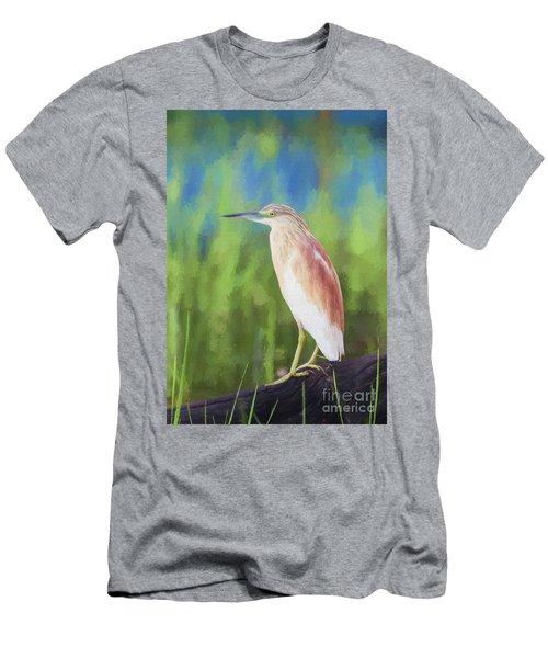 Squacco Heron Ardeola Ralloides Men's T-Shirt (Slim Fit) by Liz Leyden