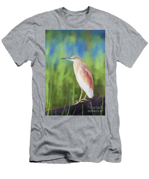 Squacco Heron Ardeola Ralloides Men's T-Shirt (Athletic Fit)