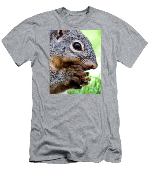 Squirrel 3 Men's T-Shirt (Athletic Fit)