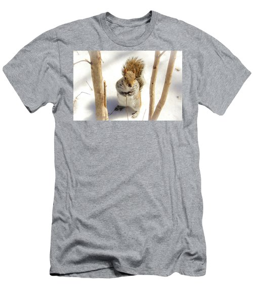Squirrel In Snow Men's T-Shirt (Athletic Fit)