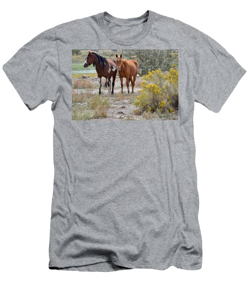 Stallion And Mare Men's T-Shirt (Athletic Fit)