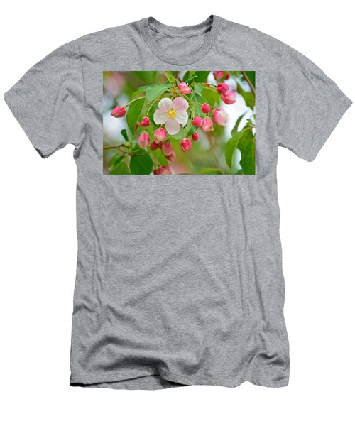 Stand Alone Japanese Cherry Blossom Men's T-Shirt (Athletic Fit)