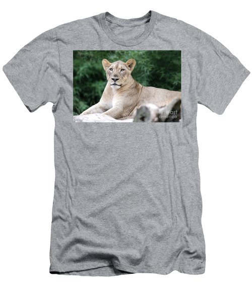 Staring Men's T-Shirt (Athletic Fit)
