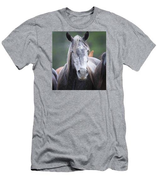 Steel Grey Men's T-Shirt (Slim Fit) by Diane Bohna