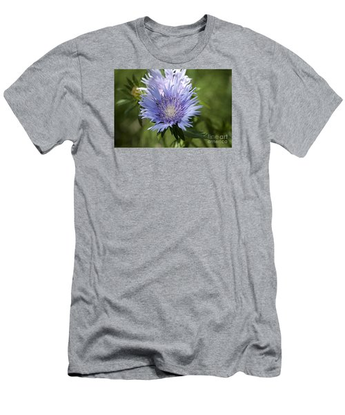 Stokes Aster 20120703_125a Men's T-Shirt (Slim Fit) by Tina Hopkins