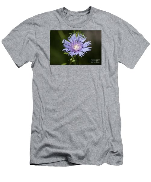 Stokes Aster 20120703_129a Men's T-Shirt (Slim Fit) by Tina Hopkins