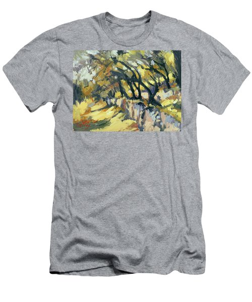 Stone Wall Olive Grove Terrace Men's T-Shirt (Athletic Fit)