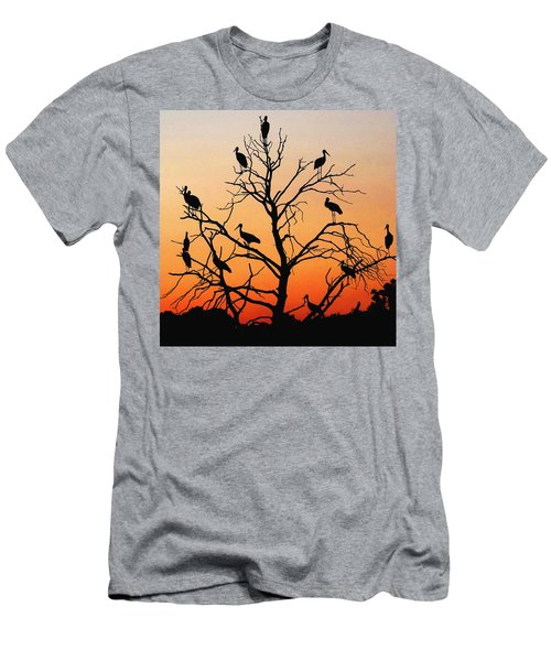 Storks In The Evening Sun Light Men's T-Shirt (Athletic Fit)