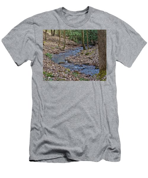 Stream Up The Hollow Men's T-Shirt (Slim Fit) by Denise Romano