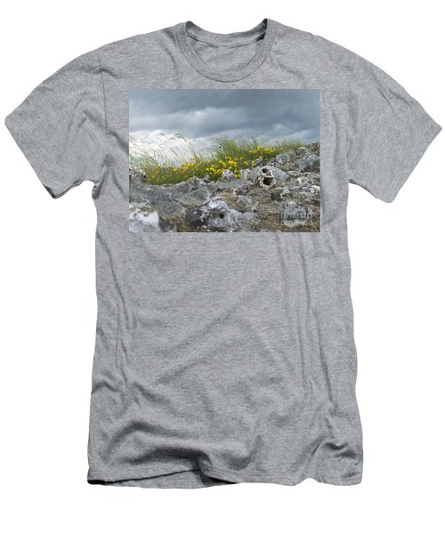 Striking Ruins Men's T-Shirt (Athletic Fit)
