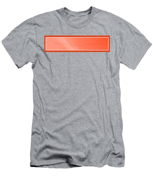 String  Of Brids In Red Men's T-Shirt (Athletic Fit)