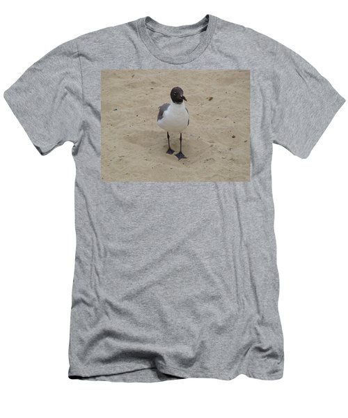 Men's T-Shirt (Slim Fit) featuring the photograph Struttin' Seagull  by Charles Kraus