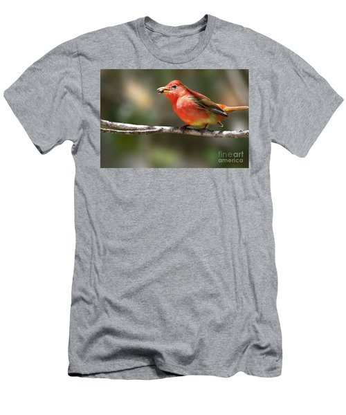 Stuffed Summer Tanager Men's T-Shirt (Athletic Fit)