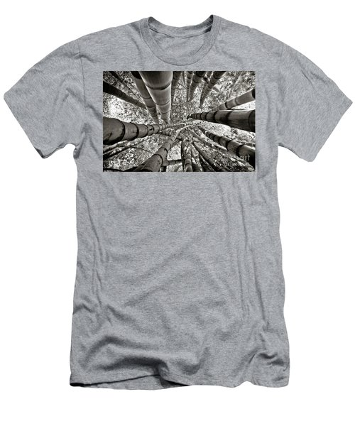 Stunning Bamboo Forest Men's T-Shirt (Athletic Fit)