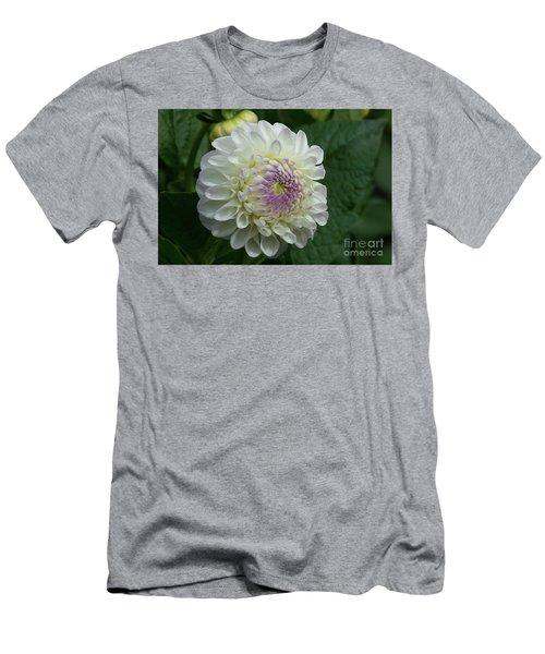 Stunning Gaylen Rose Dahlia Men's T-Shirt (Athletic Fit)
