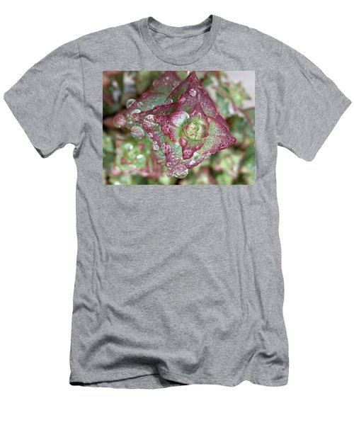 Succulent Abstract Men's T-Shirt (Athletic Fit)