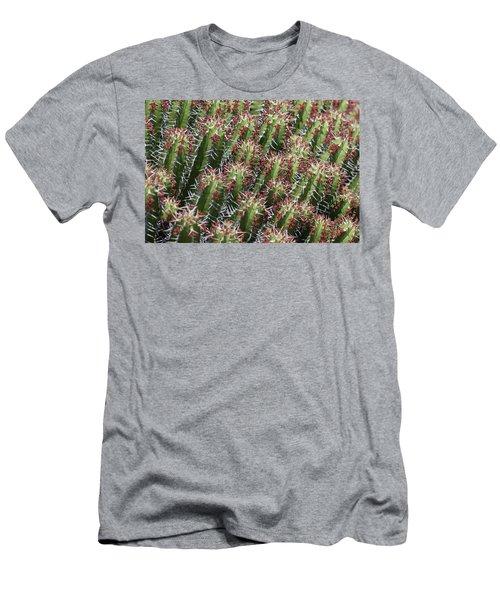 Succulent Series Vi Men's T-Shirt (Athletic Fit)