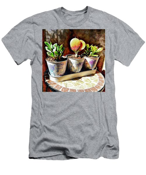 Succulents In A Group Of Three Men's T-Shirt (Athletic Fit)