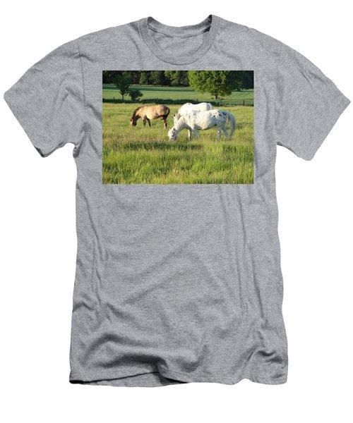 Summer Grazing Men's T-Shirt (Athletic Fit)