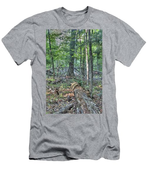 Summer In A Canadian Forest Men's T-Shirt (Athletic Fit)