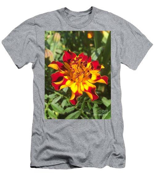 Summer Marigold Men's T-Shirt (Athletic Fit)