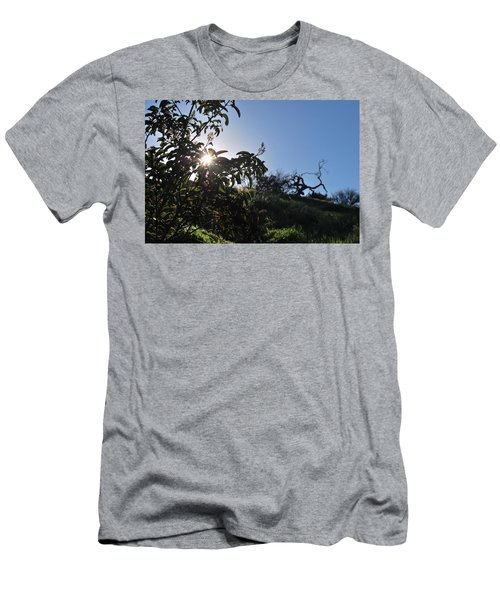 Men's T-Shirt (Athletic Fit) featuring the photograph Sun Shines Through The Greenery by Matt Harang