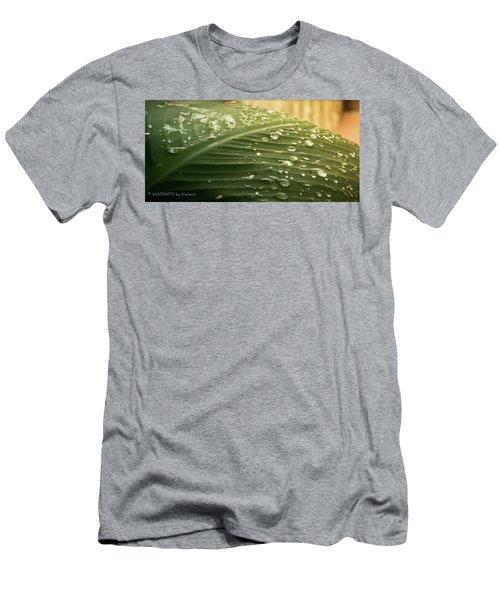 Sun Shower Men's T-Shirt (Slim Fit) by Stefanie Silva
