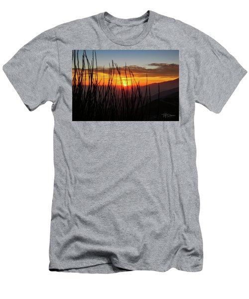 Sun Through The Blades Men's T-Shirt (Athletic Fit)