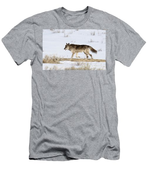 Sunday Stroll Men's T-Shirt (Athletic Fit)