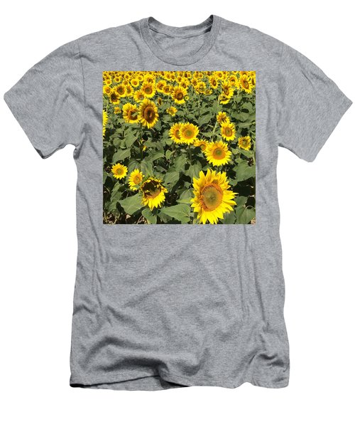Sunflower 2016 Men's T-Shirt (Athletic Fit)