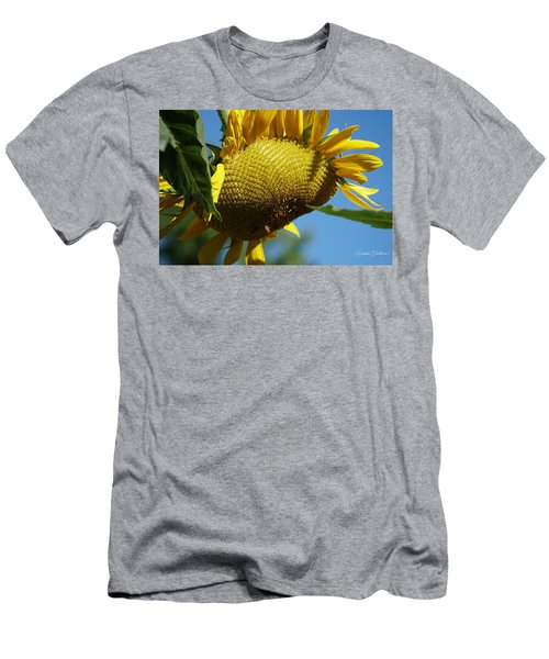Sunflower, Mammoth With Bees Men's T-Shirt (Athletic Fit)