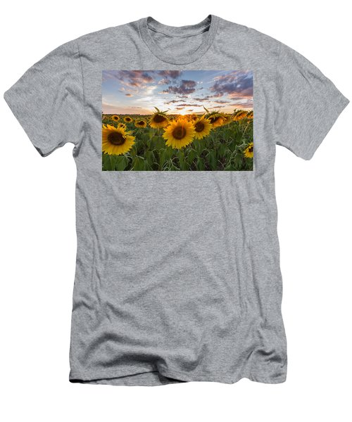 Sunflower Sunset Men's T-Shirt (Athletic Fit)