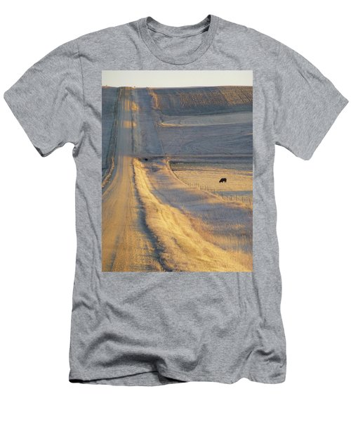Sunlit Road Men's T-Shirt (Athletic Fit)