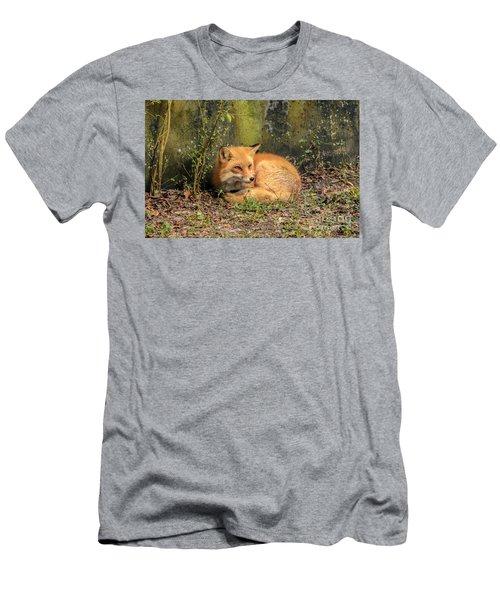 Sunning Fox Men's T-Shirt (Athletic Fit)