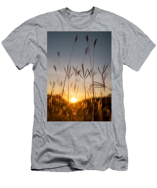 Sunset Grass Men's T-Shirt (Athletic Fit)