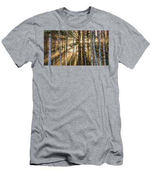 Sunshine Forest Men's T-Shirt (Slim Fit) by Pierre Leclerc Photography