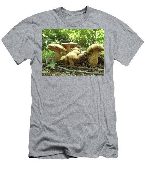 Surprise Fungi In Gibbs Garden Men's T-Shirt (Athletic Fit)