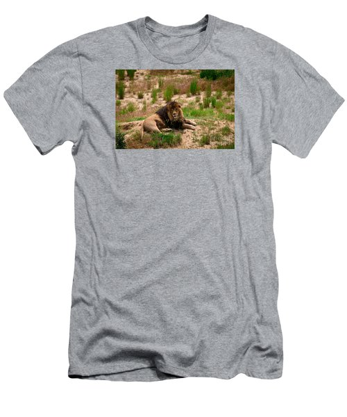 Men's T-Shirt (Slim Fit) featuring the photograph Survivor by Sandy Molinaro