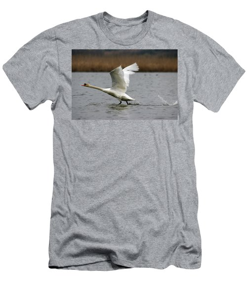 Swan During Take Off Men's T-Shirt (Athletic Fit)