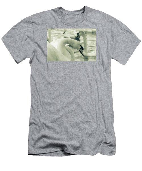 Swan In Water Men's T-Shirt (Athletic Fit)