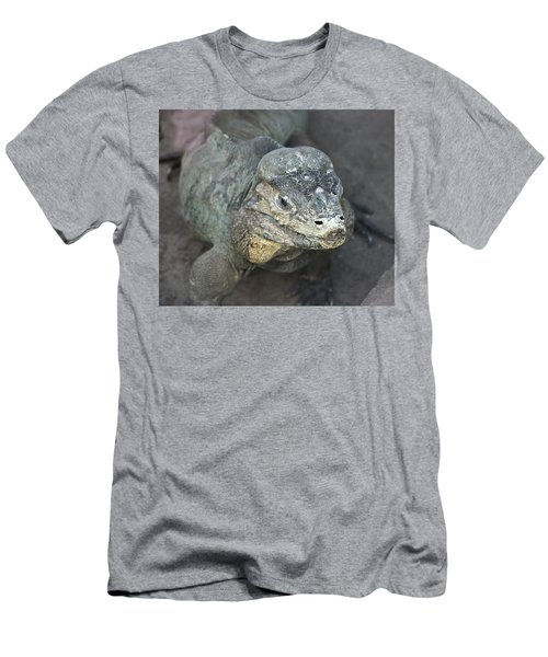 Men's T-Shirt (Athletic Fit) featuring the photograph Sweet Face Of Rhinoceros Iguana by Miroslava Jurcik