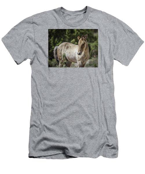 Sweetness Men's T-Shirt (Slim Fit) by Elizabeth Eldridge